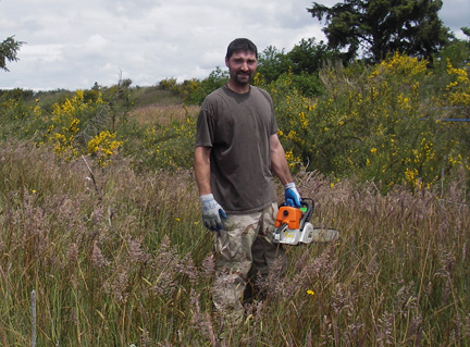 "NCLC neighbor uses chainsaw for ""oldgrowth"" scotch broom"