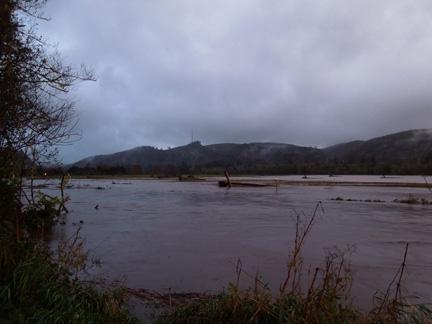 Necanicum Floodplain 1 web