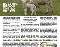 2016 NCLC Spring Newsletter Cover_website