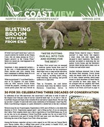 2016 NCLC Spring Newsletter Cover_website