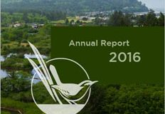 annual-report_sized for web